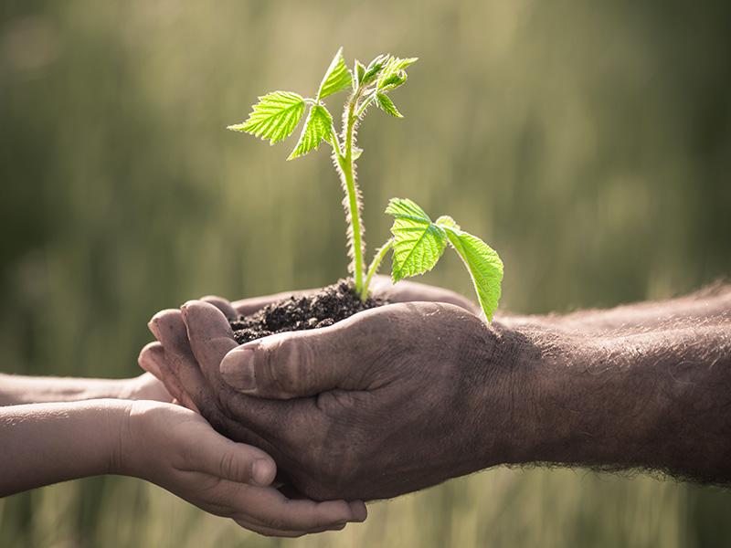 Per orti, giardinaggio, agricoltura